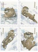 Otters in the Snow Stamp Dedication